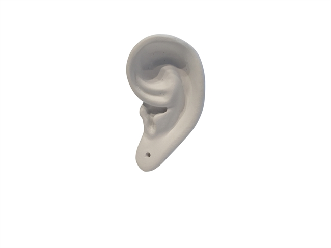 Picture of Ear wall jewellery stand H8 WHITE