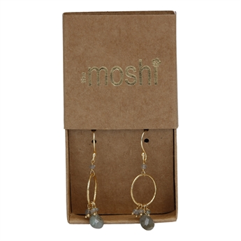 Picture of Earring Esther, gold plated