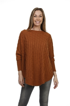 Picture of Poncho Fiona, camel